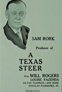 A Texas Steer