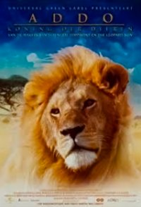 Addo: The King of the Beasts