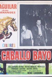 El caballo Bayo