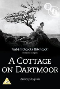 Escape from Dartmoor