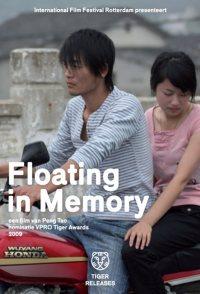 Floating in Memory