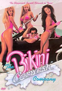 The Bikini Carwash Company