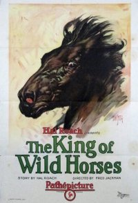 The King of Wild Horses