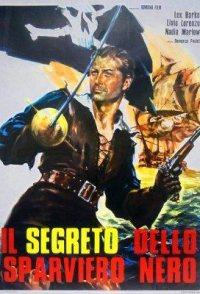 The Secret of the Black Falcon