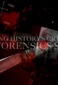 Catching History's Criminals: The Forensics Story
