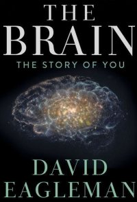The Brain with Dr. David Eagleman